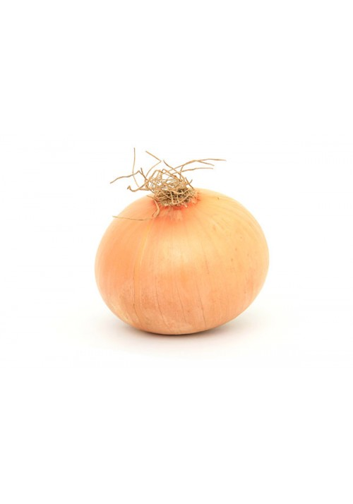 Gemüsezwiebel